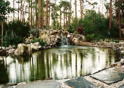 water-feature-in-backyard-pond
